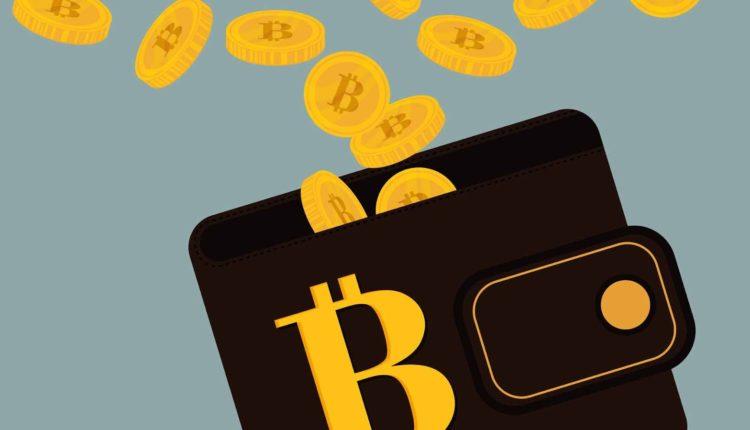 انواع کیف پول ارزهای دیجیتال