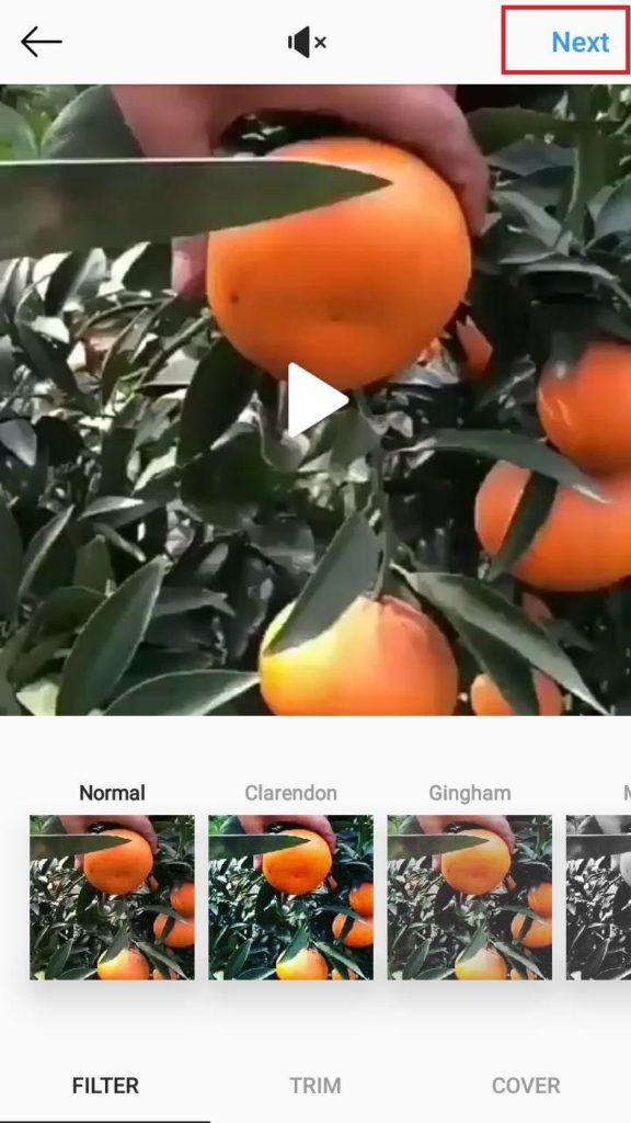 نحوه تگ کردن افراد در ویدیوهای اینستاگرام